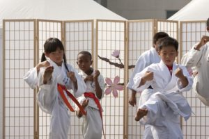 A martial arts school can only survive if its enrollment numbers are consistent.