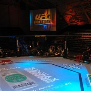CM Punk, former WWE heavyweight champion, will make his UFC debut in 2015.